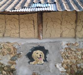 색장동 마을벽화 03